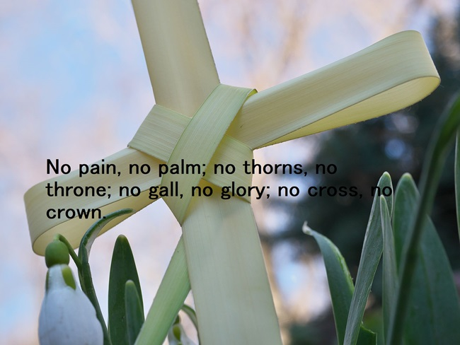 Palm Sunday 2020 Quote and Images