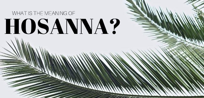 What is hosanna meaning…? When was the term hosanna used…?